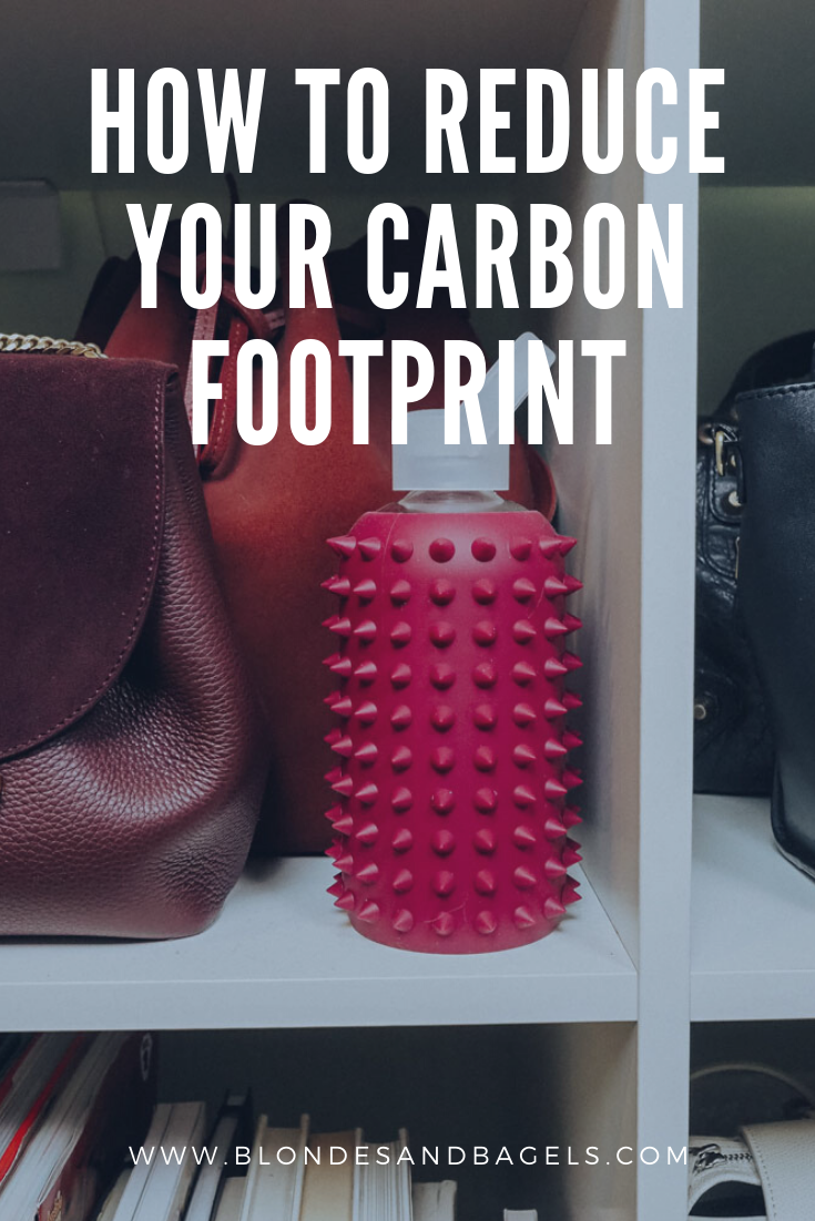 Lifestyle blogger Kelsey from Blondes & Bagels gives tips for how to reduce your carbon footprint in 2020!